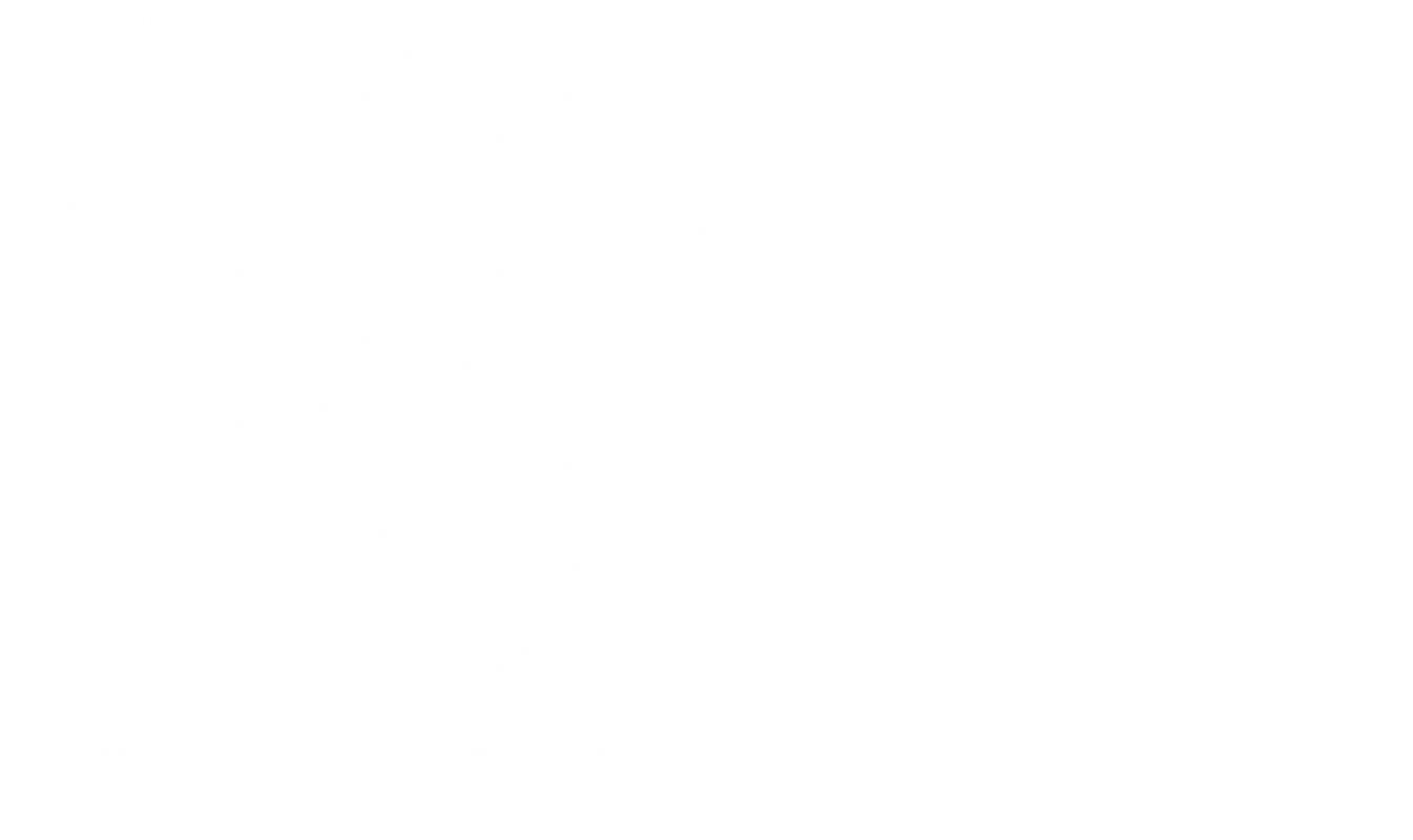 Binn Group Logo (White)