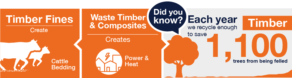 Binn Group Trade sector infographic showing timber and fines information on a orange background with white text